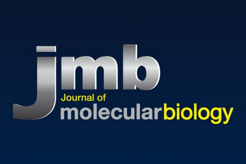 JMB I  Identité visuelle Journal of molecular biology